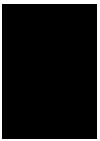 События  Художник, логопед и тренер водных программ: вакансии недели в Курске