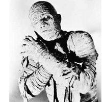 8 мумия
