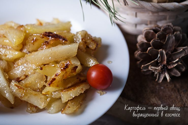 картофель4