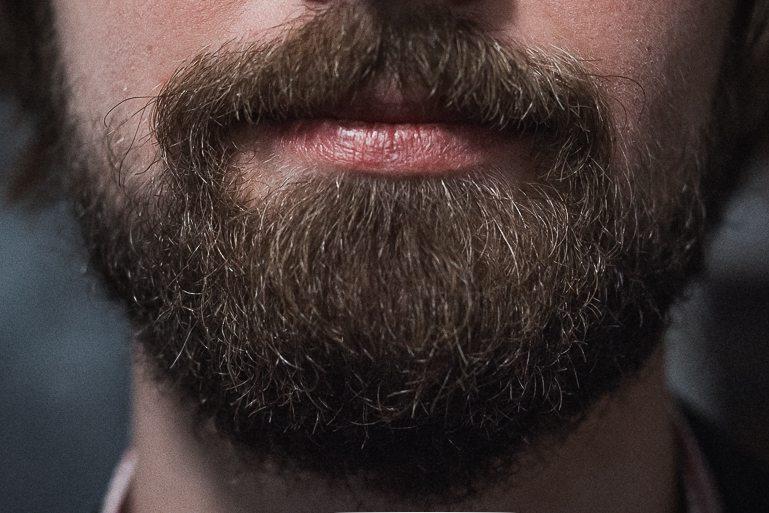 События  Какая борода у соловья?